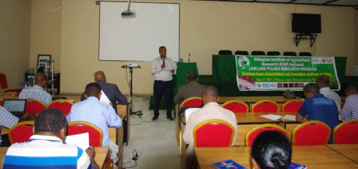 Dr Berhanu briefing the participants on the objectives and expectations of the meeting.  Photo: ICRISAT