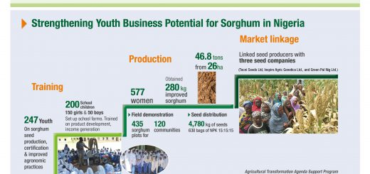 Youth & Agriculture