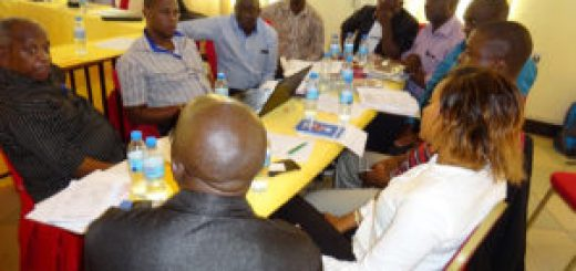 Participants-in-group-work-to-define-key-motivations-for-seed-companies-300x213