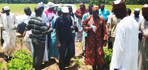 Seed-Council-Training-on-quality-seed-production-1024x569